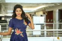Shalu Chourasiya at Marriage Needs Bridal Fashion Week 2017 Logo Launch (18)