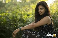 Srinivasa Kalyana Movie Stills (10)