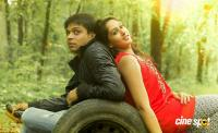 Srinivasa Kalyana Movie Stills (5)