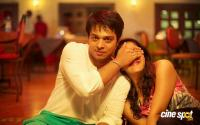 Srinivasa Kalyana Movie Stills (9)