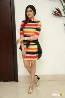 Adah Sharma New Images (4)