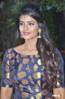 Aishwarya Rajesh at Kattappava Kanom Press Meet (2)
