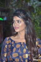 Aishwarya Rajesh at Kattappava Kanom Press Meet (5)