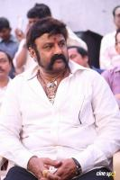 Balakrishna Latest Gallery (12)