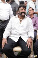 Balakrishna Latest Gallery (14)