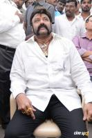 Balakrishna Latest Gallery (15)