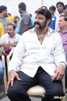 Balakrishna Latest Gallery (16)