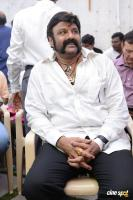 Balakrishna Latest Gallery (17)