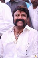 Balakrishna Latest Gallery (3)