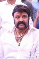 Balakrishna Latest Gallery (8)