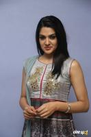 Sakshi Chowdary at Oollo Pelliki Kukkala Hadavidi Press Meet (20)