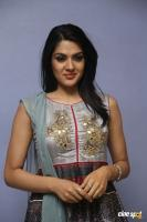 Sakshi Chowdary at Oollo Pelliki Kukkala Hadavidi Press Meet (8)