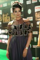 Sanjjanaa at IIFA 2017 (1)