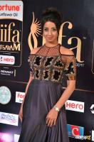 Sanjjanaa at IIFA 2017 (15)