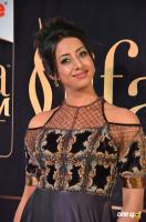 Sanjjanaa at IIFA 2017 (17)