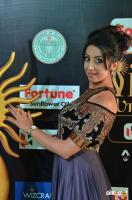 Sanjjanaa at IIFA 2017 (23)