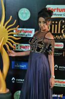 Sanjjanaa at IIFA 2017 (24)