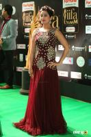 Tejaswini Prakash at IIFA 2017 (4)