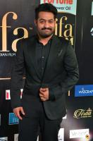 Jr NTR at IIFA Utsavam 2017 (2)