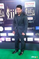Jr NTR at IIFA Utsavam 2017 (6)