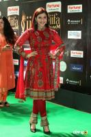 Mannara Chopra at IIFA Utsavam 2017 (1)