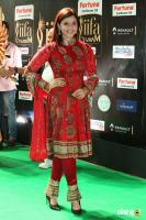 Mannara Chopra at IIFA Utsavam 2017 (2)