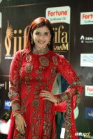 Mannara Chopra at IIFA Utsavam 2017 (3)