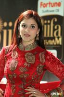 Mannara Chopra at IIFA Utsavam 2017 (5)