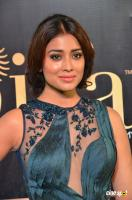Shriya Saran at IIFA Utsavam 2017 (12)