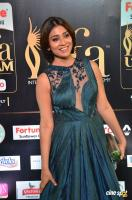 Shriya Saran at IIFA Utsavam 2017 (13)