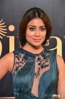 Shriya Saran at IIFA Utsavam 2017 (3)
