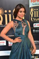 Shriya Saran at IIFA Utsavam 2017 (4)