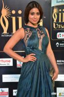 Shriya Saran at IIFA Utsavam 2017 (8)