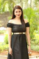 Mannara Chopra at Rogue Movie Success Meet (1)