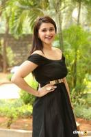 Mannara Chopra at Rogue Movie Success Meet (14)