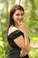 Mannara Chopra at Rogue Movie Success Meet (16)