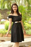Mannara Chopra at Rogue Movie Success Meet (7)