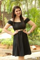 Mannara Chopra at Rogue Movie Success Meet (8)