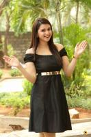 Mannara Chopra at Rogue Movie Success Meet (9)