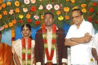 Film Producer Pazhaniappan Daughters wedding event photos (60)