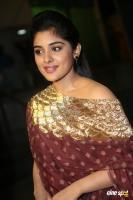 Niveda Thomas at Zee Apsara Awards (13)