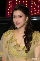 Mannara Chopra at Zee Telugu Apsara Awards (15)