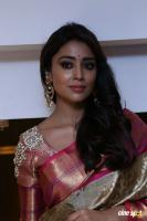 Shriya Latest Pics (11)