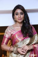 Shriya Latest Pics (12)