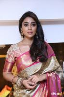 Shriya Latest Pics (13)