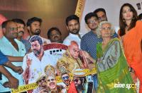 Thappu Thanda Audio Launch (35)