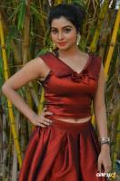 Anisha Xavier at Pichuva Kaththi Audio Launch (10)