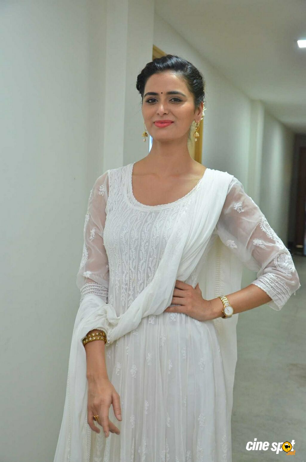 Meenakshi Dixit Latest Photos (1)