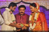 Vinayan Daughter Wedding photos (29)
