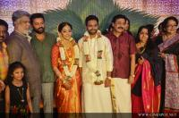 Vinayan Daughter Wedding photos (49)